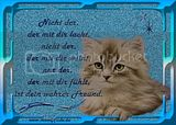 freundschaft-gbpic-33